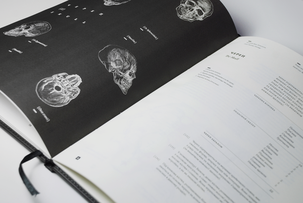 anatomy osteology book design inspiration