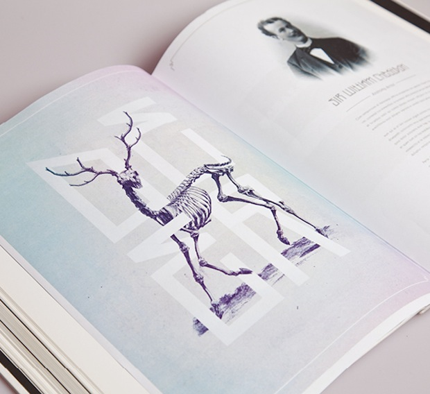 Bone: Anatomy illustration editorial spread